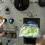 Space: How to Cook Spinach In Space | Video